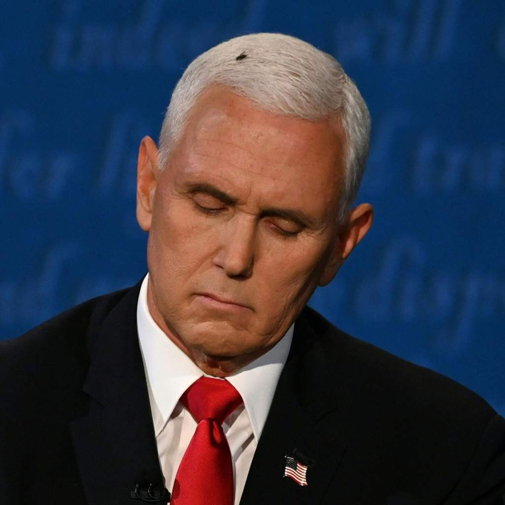 Pence fly moment