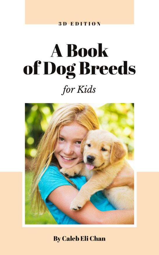 Dog Breeds Guide Girl Playing with Puppy