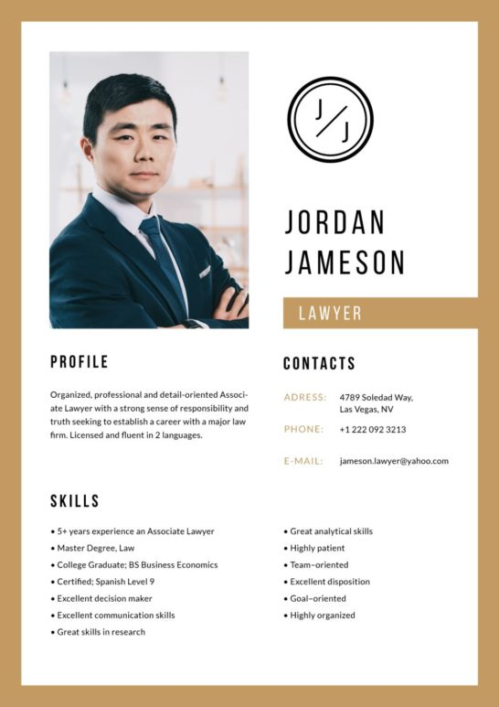 Professional Lawyer skills and experience